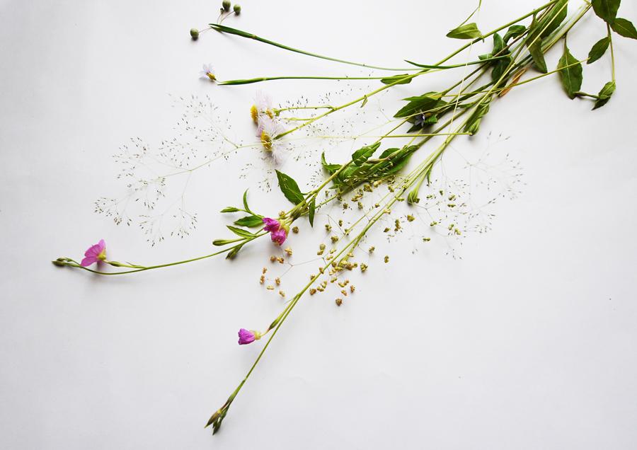0517_flower1